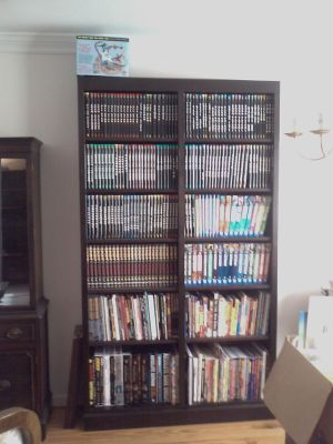 A bookcase filled with collections