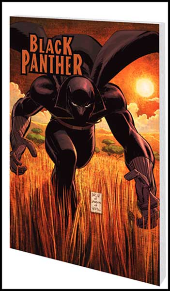 Image: Black Panther: Who is the Black Panther? SC  - Marvel Comics