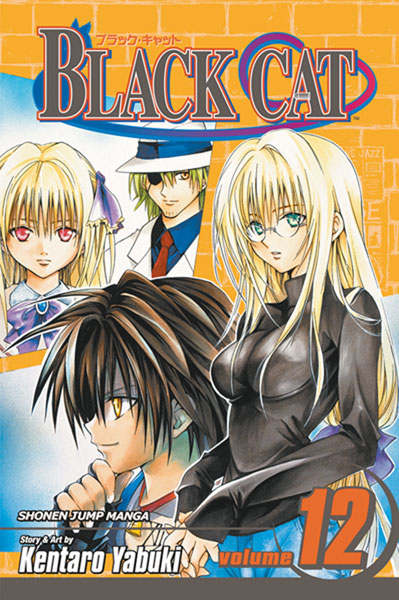 Image: Black Cat Vol. 12 SC  - Viz Media LLC