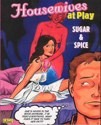 Image: Housewives at Play: Sugar & Spice SC  - Fantagraphics Books
