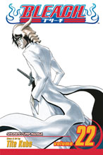 Image: Bleach Vol. 22 SC  - Viz Media LLC