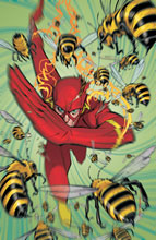 Image: Flash #244 - DC Comics