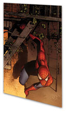 Image: Marvel Adventures Spider-Man Vol. 11: Animal Instict Digest  - Marvel Comics