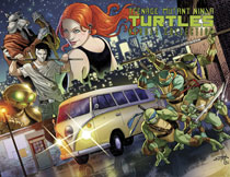 Image: Teenage Mutant Ninja Turtles Heroes Collection HC  - IDW Publishing