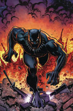 Image: Rise of Black Panther #6 (variant cover - Adams) - Marvel Comics
