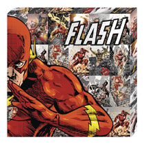 Image: DC Metallic Canvas Art: Flash Profile  - Cohen Hazan Group LLC