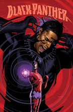 Image: Black Panther #166 (variant cover - Sook) - Marvel Comics