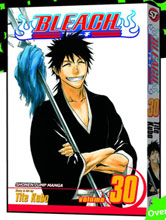 Image: Bleach Vol. 30 SC  - Viz Media LLC