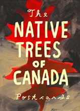 Image: Native Trees of Canada Postcard Set  - Drawn & Quarterly