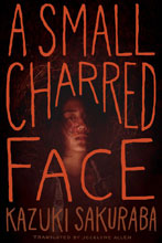 Image: Small Charred Face Novel SC  - Viz Media LLC