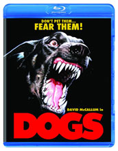 Image: Dogs BluRay  -