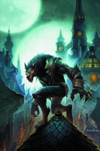 Image: World of Warcraft: Curse of the Worgen HC  - DC Comics -