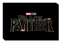 Image: Marvel's Black Panther: Art of the Movie Slipcase HC  - Marvel Comics