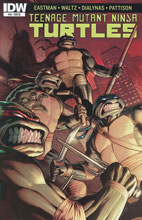 Image: Teenage Mutant Ninja Turtles #53 (variant incentive cover) (10-copy) - IDW Publishing