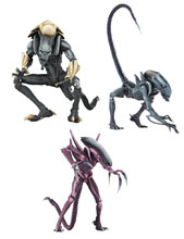 Image: Alien vs. Predator Arcade Alien Figure 7-inch Scale Action Figure Assortment  - Neca