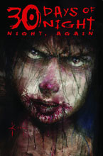 Image: 30 Days of Night: Night, Again SC  - IDW Publishing