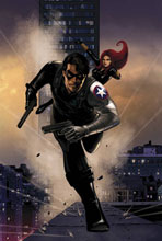 Image: Winter Soldier #13