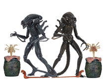 Image: Aliens Ultimate Aliens Warrior Action Figure Assortment  (7-inch) - Neca