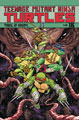 Image: Teenage Mutant Ninja Turtles Vol. 18: Trial of Krang SC  - IDW Publishing