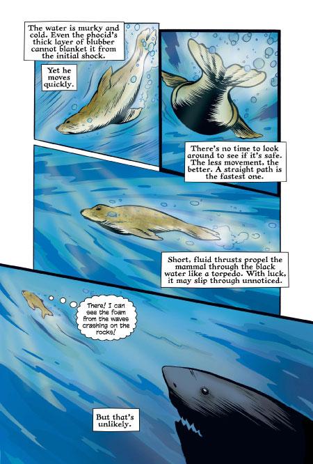XOC: The Journey of a Great White HC  - Oni Press Inc.