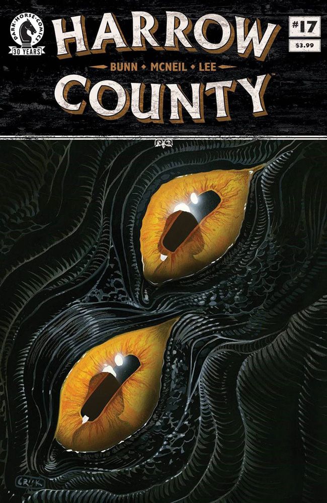 Image: Harrow County #17  [2016] - Dark Horse Comics