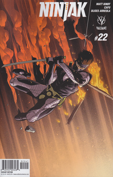 Image: Ninjak #22 (cover D incentive - Henry) (20-copy)  [2016] - Valiant Entertainment LLC