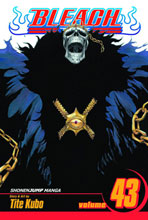 Image: Bleach Vol. 43 SC  - Viz Media LLC