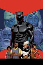 Image: Black Panther #15  [2017] - Marvel Comics