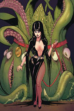 Image: Elvira: Mistress of the Dark #11 (incentive cover - Seeley virgin) (25-copy) - Dynamite