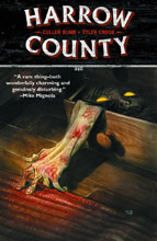 Image: Harrow County Vol. 01: Countless Haints SC  - Dark Horse Comics