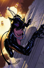 Image: Catwoman: The Long Road Home SC  - DC Comics