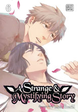 Image: Strange and Mystifying Story Vol. 06 GN  - Sublime