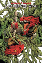 Image: Dungeons & Dragons: A Darkened Wish #3 (cover A - Fowler) - IDW Publishing