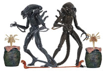 Image: Aliens: Ultimate Aliens Warrior  (7-inch) Scale Action Figure Assortment - Neca