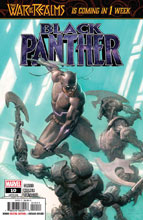 Image: Black Panther #10 - Marvel Comics