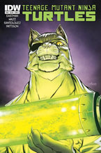 Image: Teenage Mutant Ninja Turtles #38 - IDW Publishing