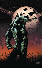 Image: Swamp Thing: The Dead Don't Sleep SC  - DC Comics