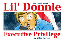 Image: Li'l Donnie Vol. 01: Executive Privilege HC  - Image Comics