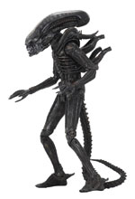 Image: Aliens 40th Anniversary Ultimate Action Figure: Big Chap  (7 Inches) - NECA