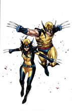 Image: Generations: Wolverine & All New Wolverine by Coipel Poster  - Marvel Comics