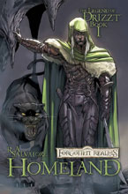 Image: Dungeons & Dragons: The Legend of Drizzt Vol. 01: Homeland SC  - IDW Publishing