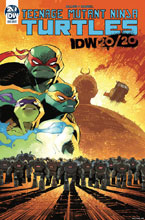 Image: Teenage Mutant Ninja Turtles [IDW 2020]  (main cover - Daniel) - IDW Publishing