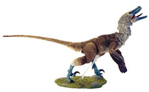 Image: Beasts of Mesozoic Raptor Series Action Figure: Acheroraptor  (1/6 scale) - Creative Beast Studio LLC