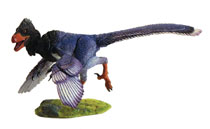 Image: Beasts of Mesozoic Raptor Series Action Figure: Zhenyuanlong Blue  (1/6 scale) - Creative Beast Studio LLC