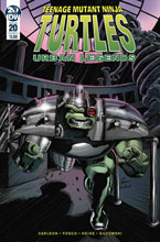 Image: Teenage Mutant Ninja Turtles: Urban Legends #20 (cover A - Fosco) - IDW Publishing